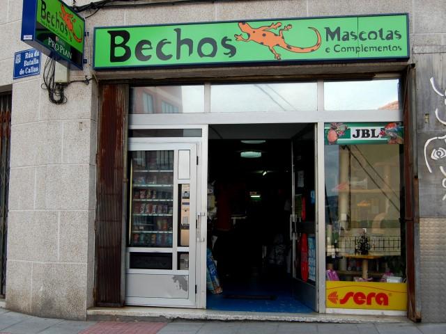 BECHOS