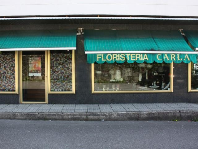 FLORISTERIA CARLA
