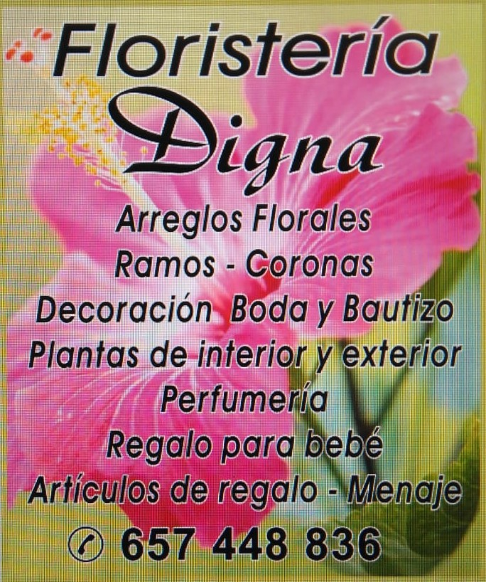 Logotipo FLORISTERÍA DIGNA